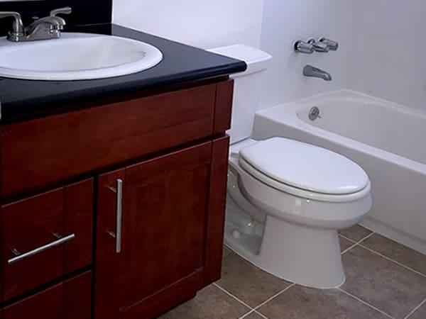 Bathroom with black granite