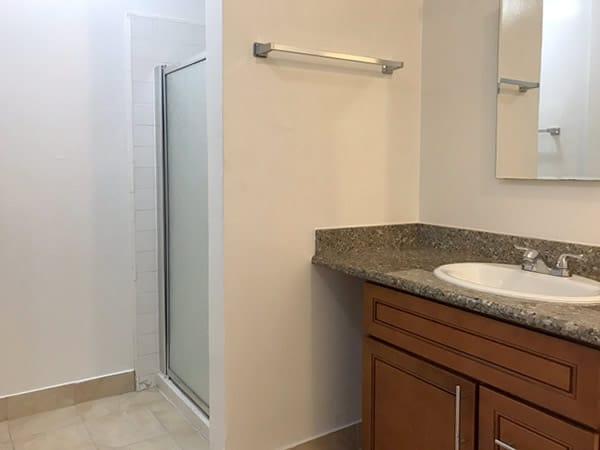 Studio apartment bathroom sink and shower