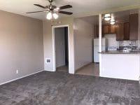 Studio apartment living area & kitchen